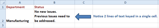 a long comment in excel, keyed in multiple lines, but in the same single cell
